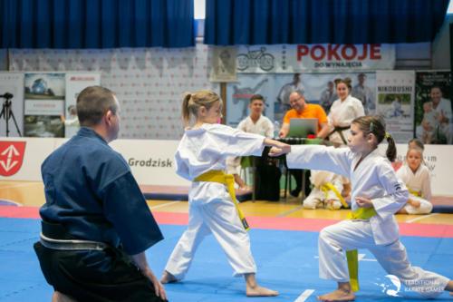 karate games 20200914 040
